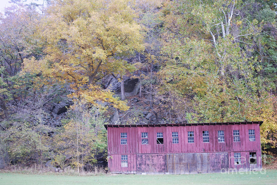 Autumn Poultry Barn Photograph