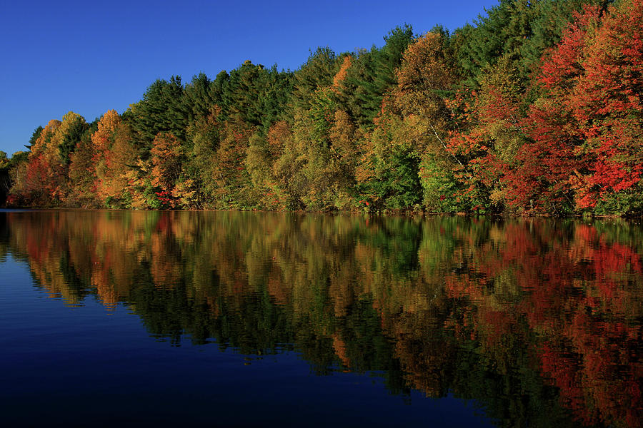 Autumn Reflection Of Colors Photograph