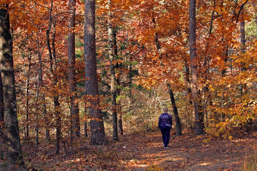 Autumn Stroll Photograph