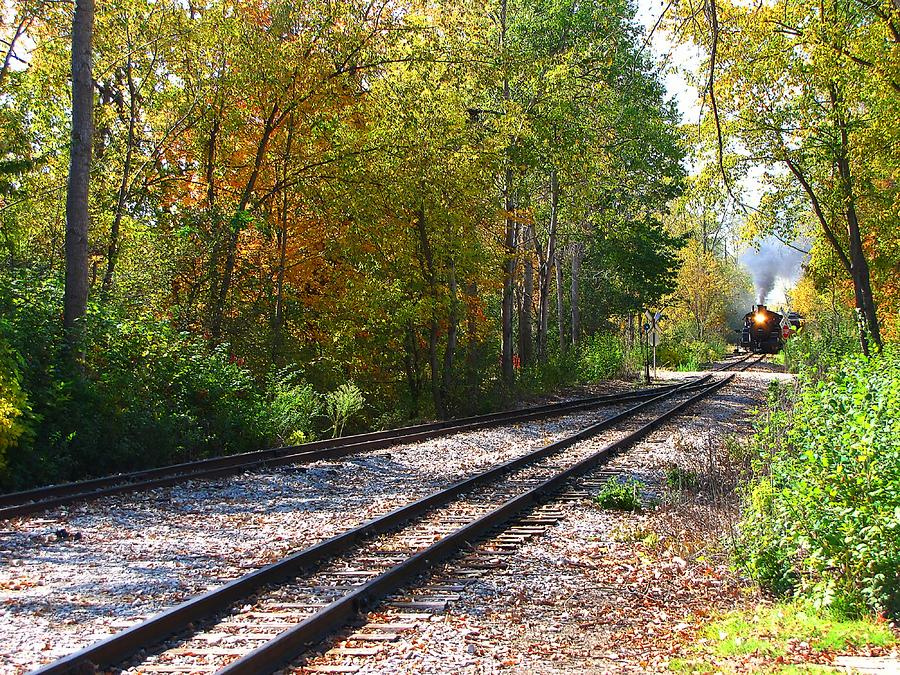 Autumn Train Photograph