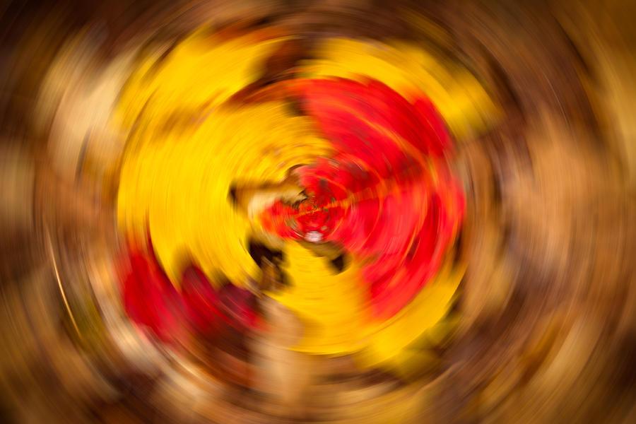 Autumn Photograph - Autumn Trance by Matt Dobson