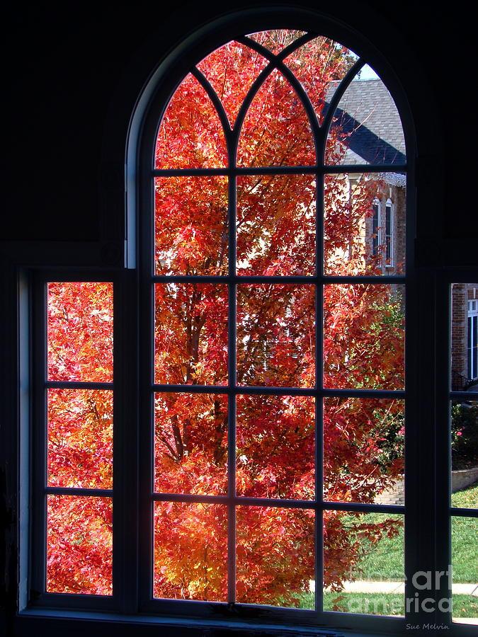 Autumn View Thru A Picture Window Photograph