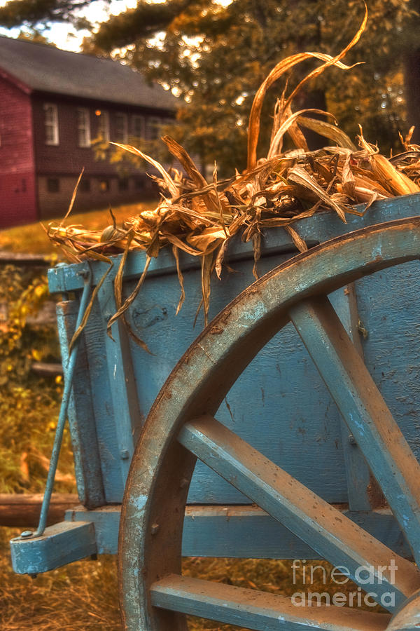 Autumn Wagon Photograph  - Autumn Wagon Fine Art Print