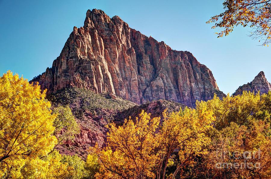 Autumn Watchman Photograph