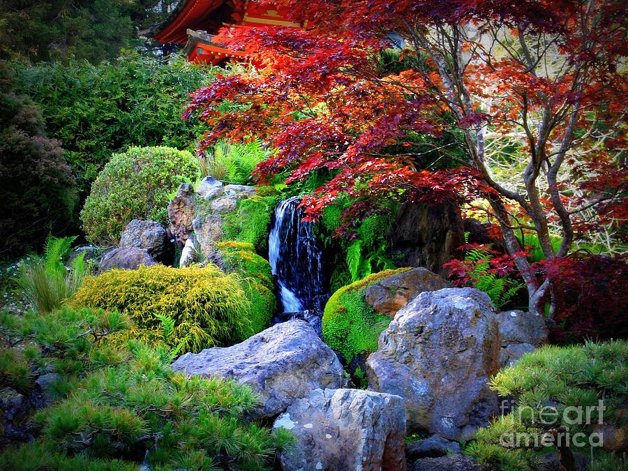 Autumn Waterfall Photograph  - Autumn Waterfall Fine Art Print