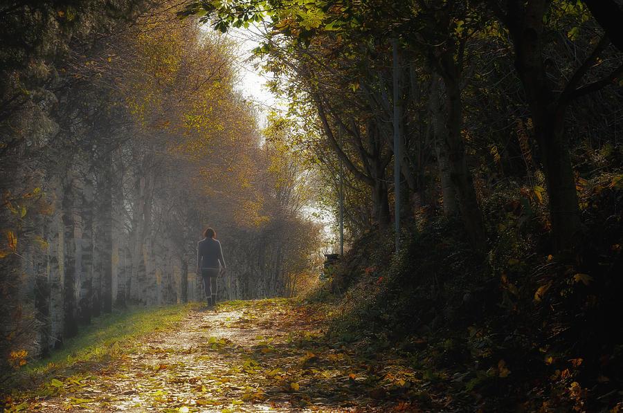 Autumn Photograph - Autumn Way by Jaroslaw Oleksyk