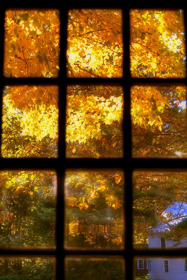 Autumn Window 2 Photograph  - Autumn Window 2 Fine Art Print