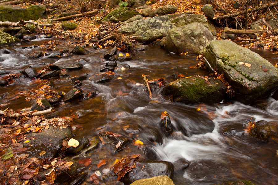 Autumns Creek Photograph  - Autumns Creek Fine Art Print
