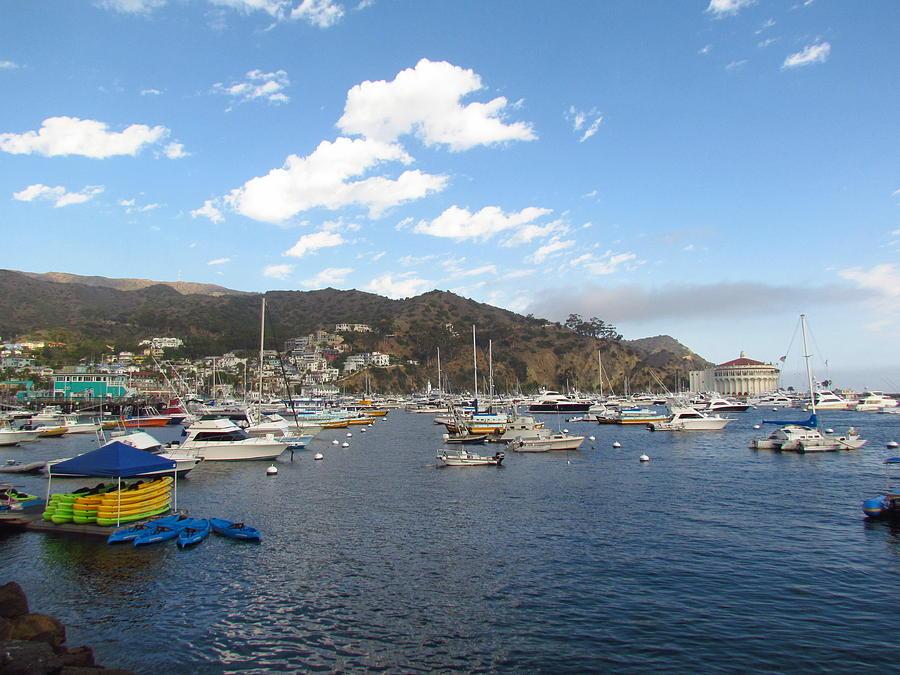 Avalon bay catalina island photograph by tony and kristi for Catalina bay