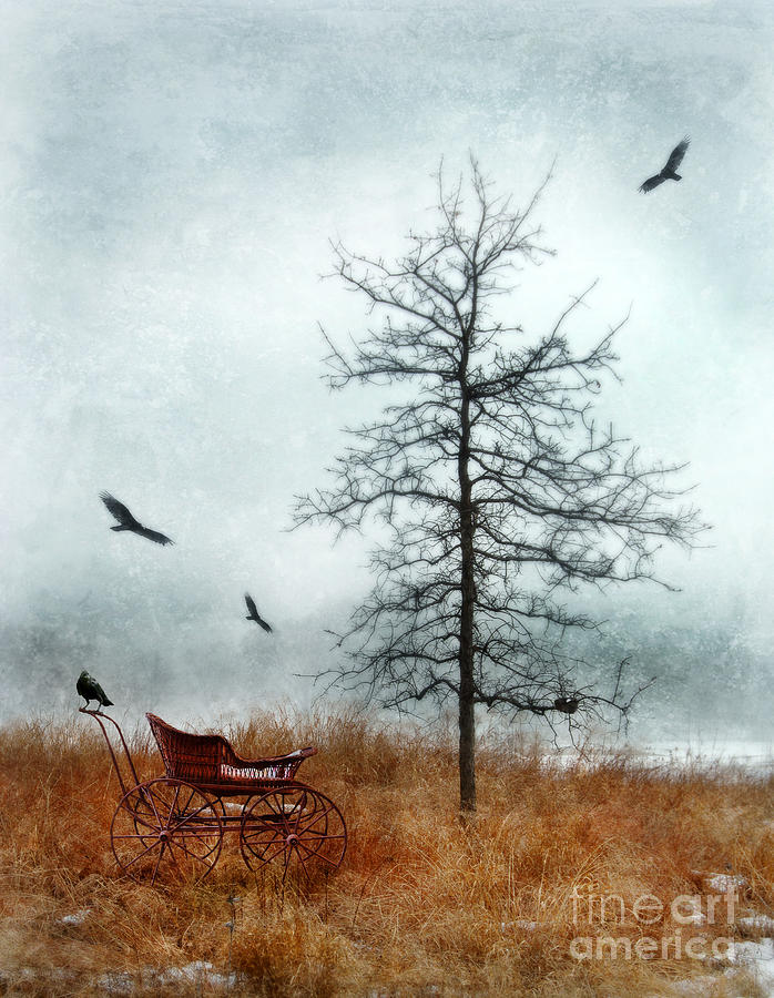 Baby Buggy By Tree With Nest And Birds Photograph  - Baby Buggy By Tree With Nest And Birds Fine Art Print