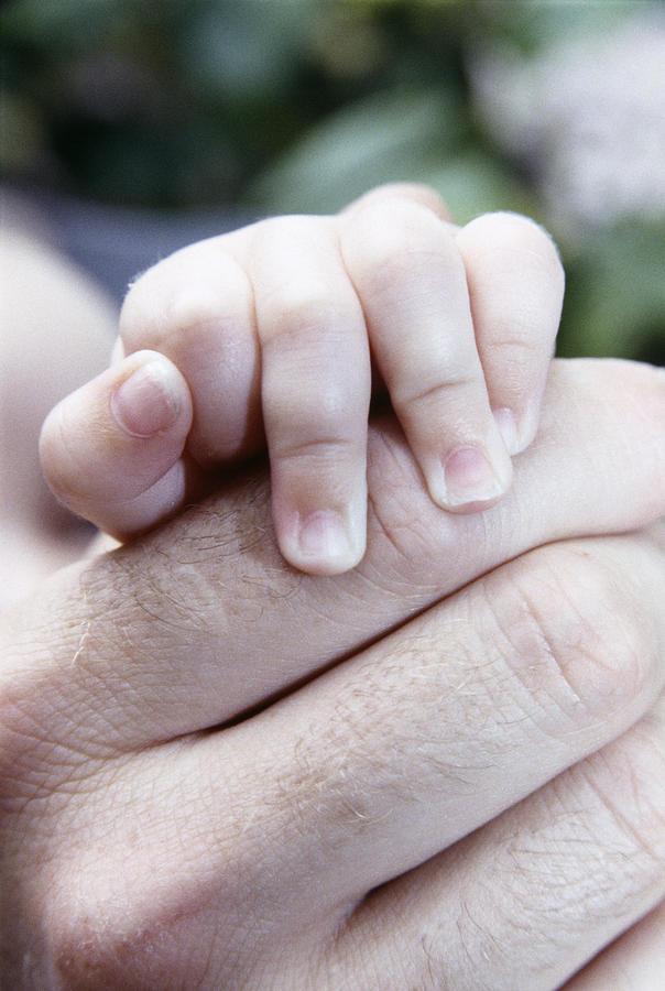 Babys Hand Photograph