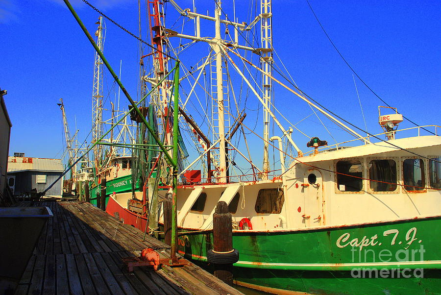 Back In The Harbor Photograph  - Back In The Harbor Fine Art Print