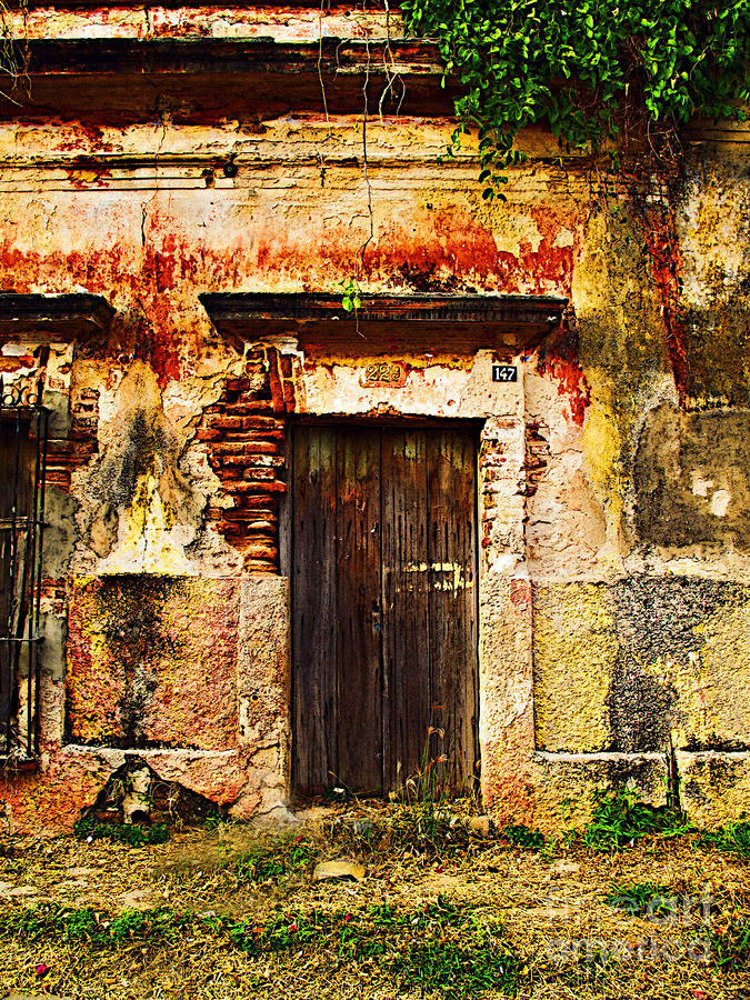 Back Lot By Darian Day Photograph  - Back Lot By Darian Day Fine Art Print