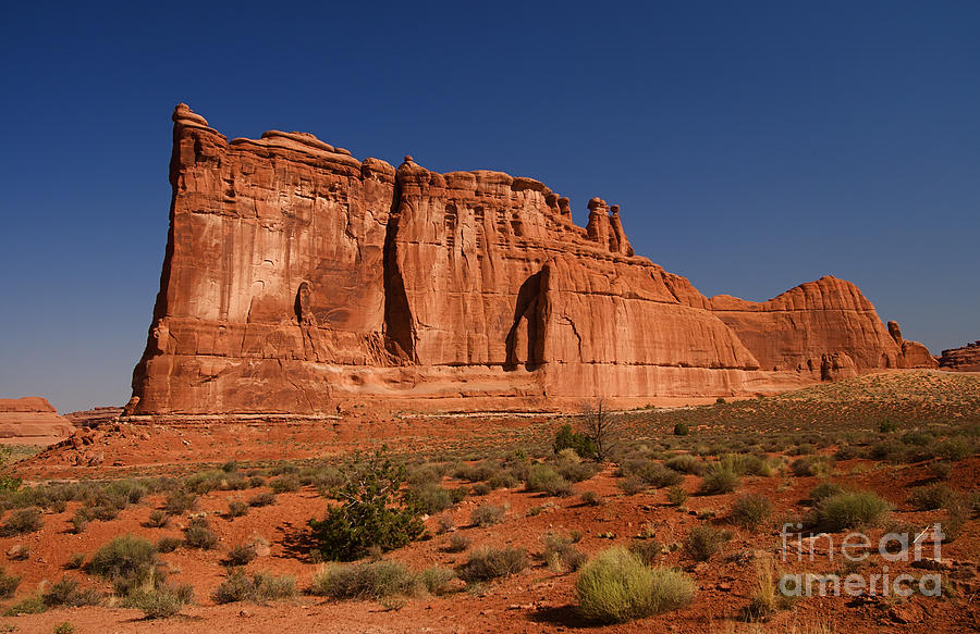 Balanced Rock Arches Np Photograph