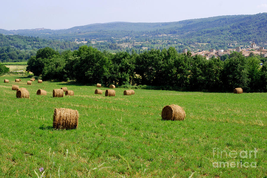 Bales Of Hay Photograph