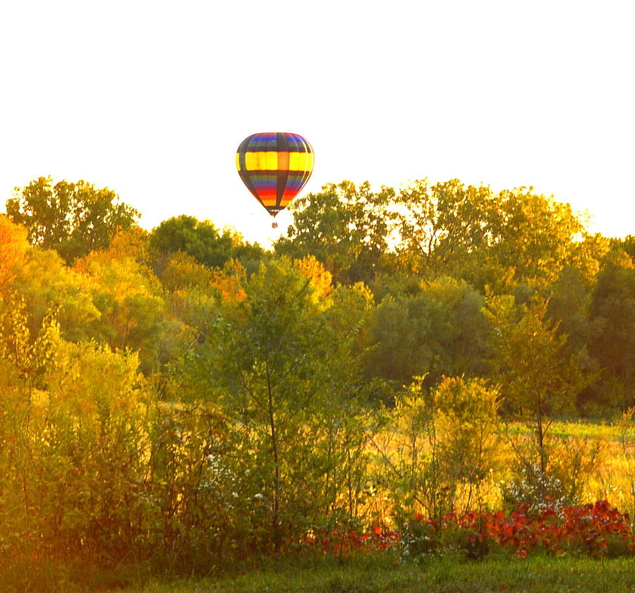 Balloon On The Rise Photograph