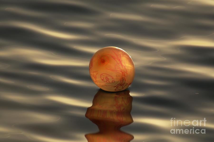 Balloons On The Water Photograph  - Balloons On The Water Fine Art Print