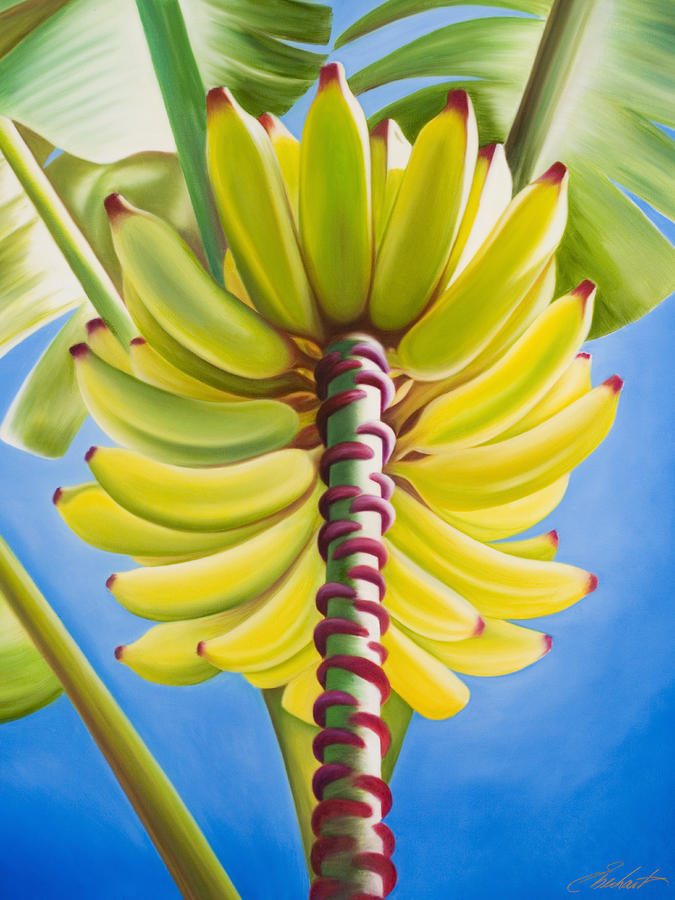 Banana Tree Cluster Painting  - Banana Tree Cluster Fine Art Print