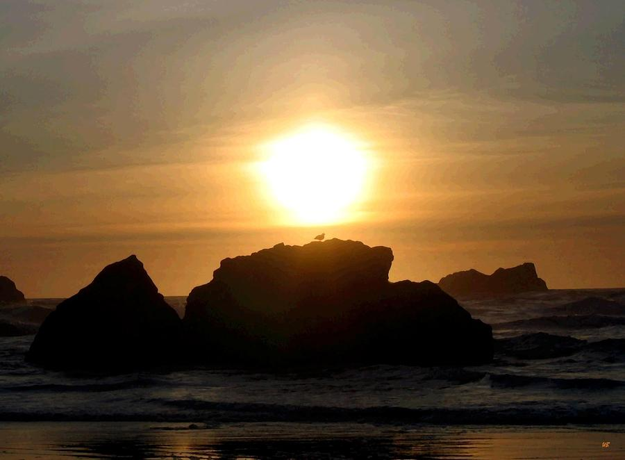 Bandon Beach Silhouette Digital Art  - Bandon Beach Silhouette Fine Art Print