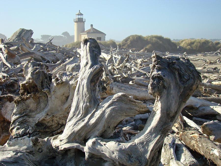 Bandon Oregon Lighthouse Art Prints Summer Coastal Photograph