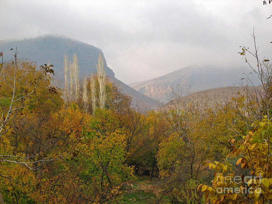 Barada Valley In Fall Photograph