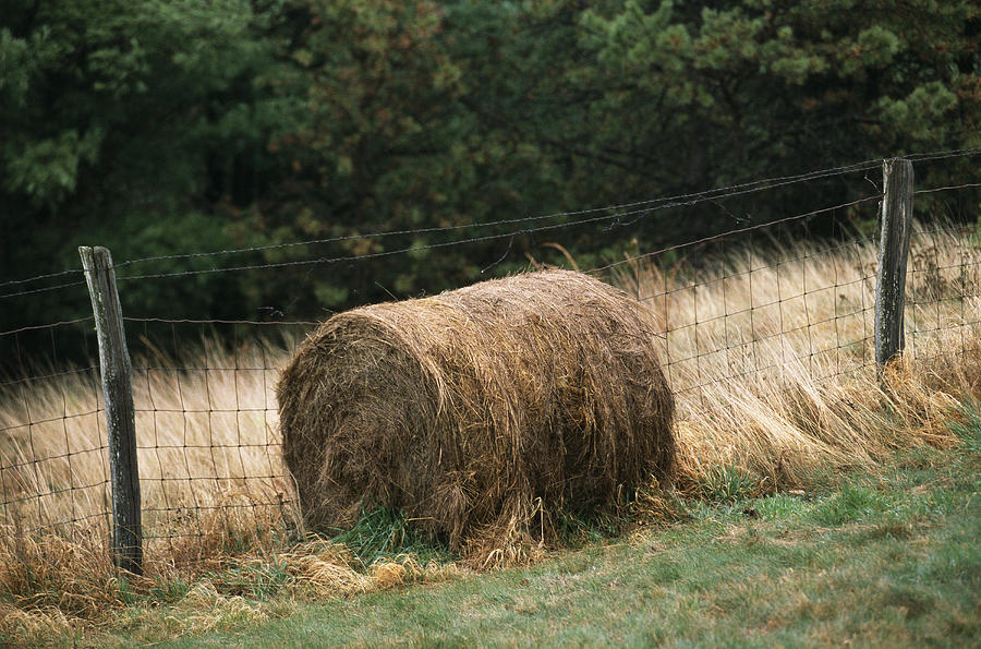 Barbed Wire Fence And Hay Roll Photograph