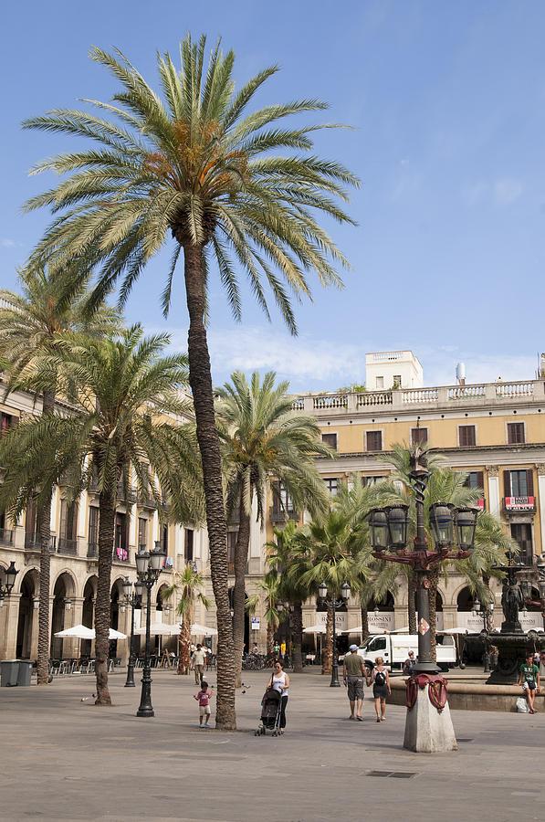 Barcelona Placa Reial Photograph