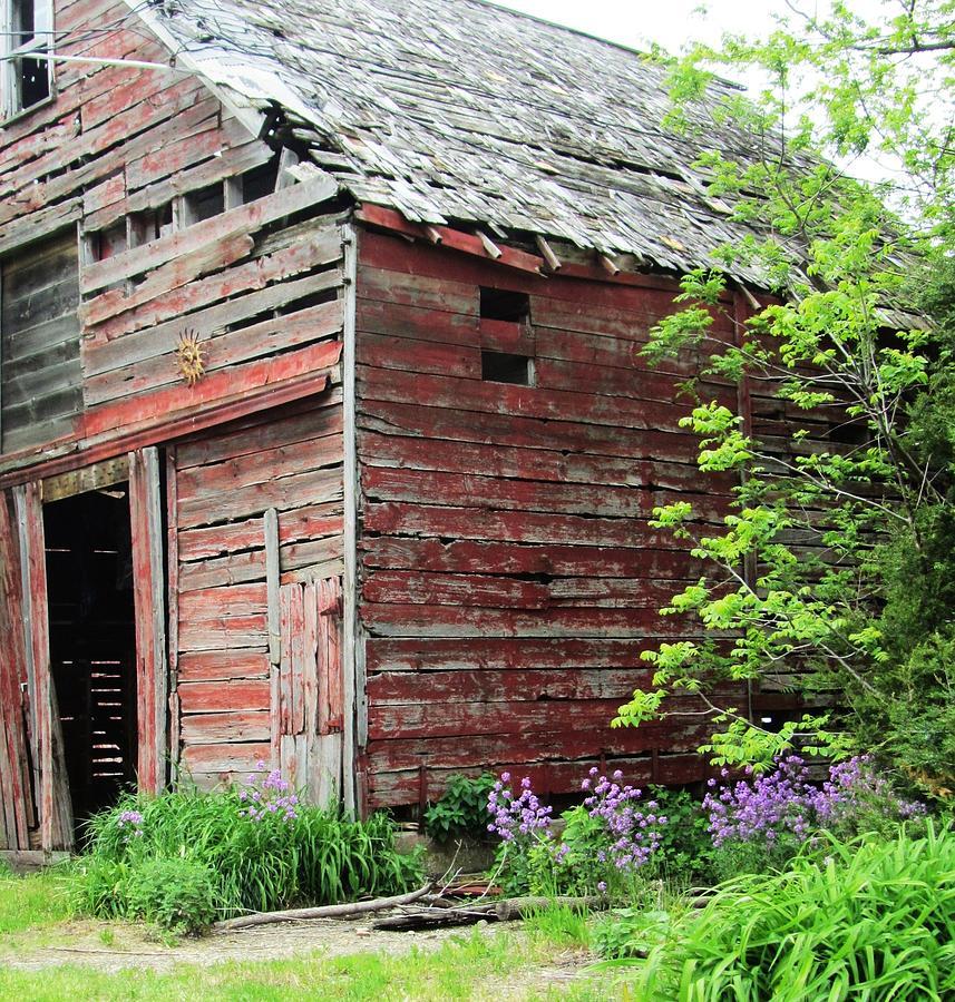 Barn And Flowers Photograph - Barn-10 by Todd Sherlock