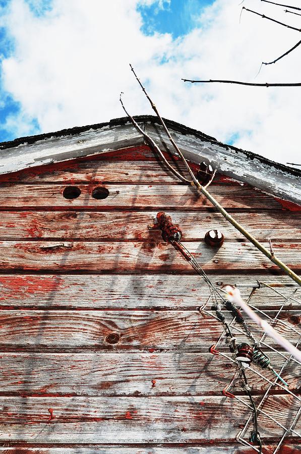 Barn-19 Photograph