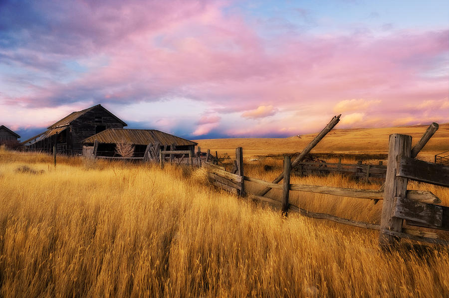 Barn Photograph - Barn And Field 2 by Peter Olsen
