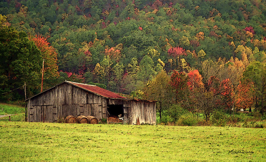 Barn North Carolina 1994 Photograph  - Barn North Carolina 1994 Fine Art Print