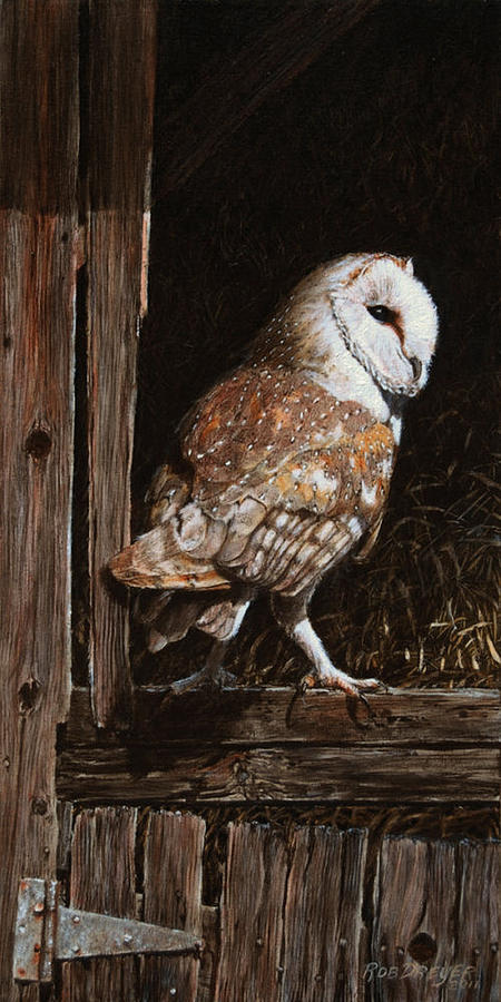Barn Owl In The Old Barn Painting