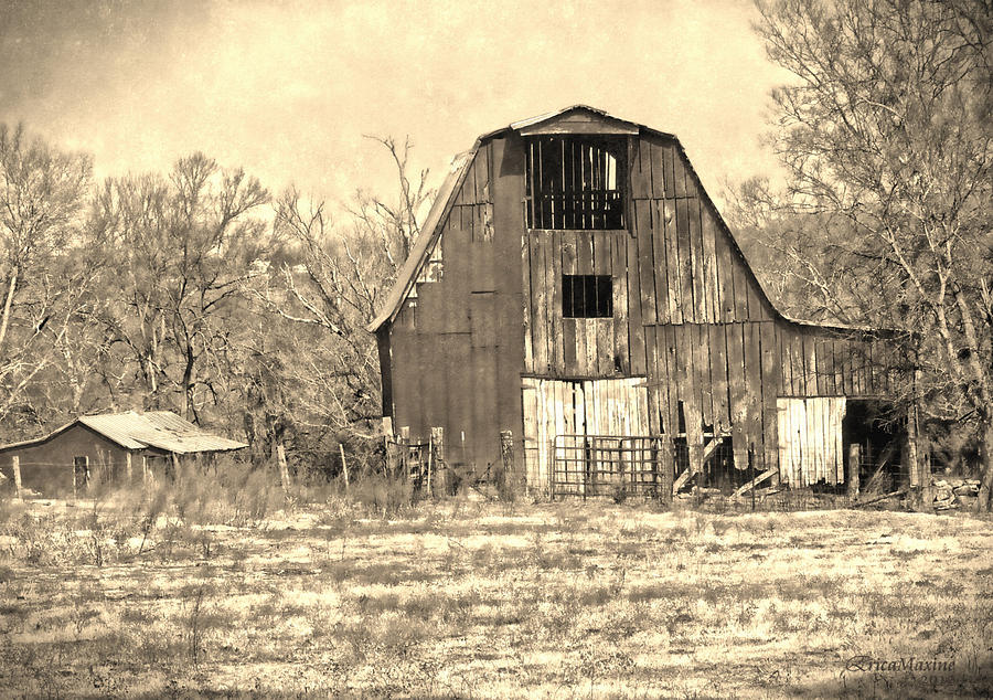 Barn-sepia Photograph