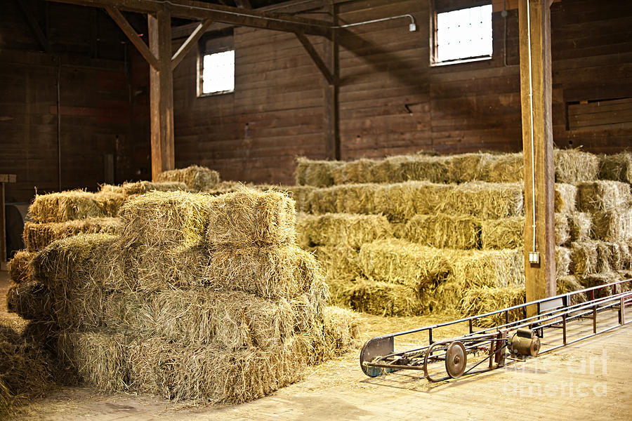 Barn With Hay Bales Photograph