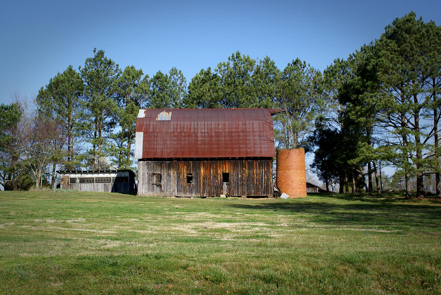 Barn With Tree In Silo Photograph