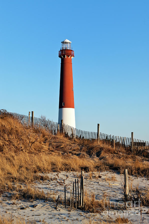 Barnegat Lighthouse Nj Photograph