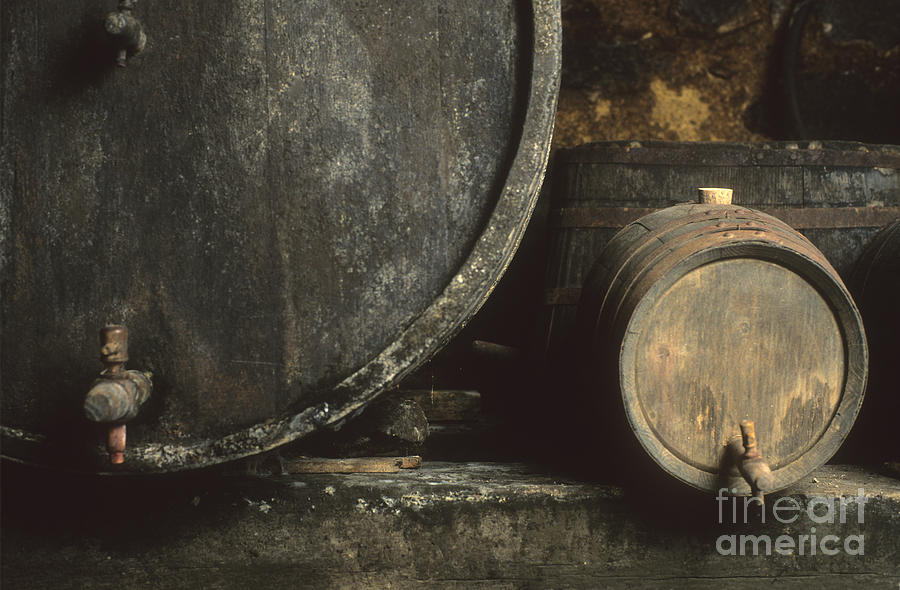 Barrels Of Wine In A Wine Cellar. France Photograph  - Barrels Of Wine In A Wine Cellar. France Fine Art Print