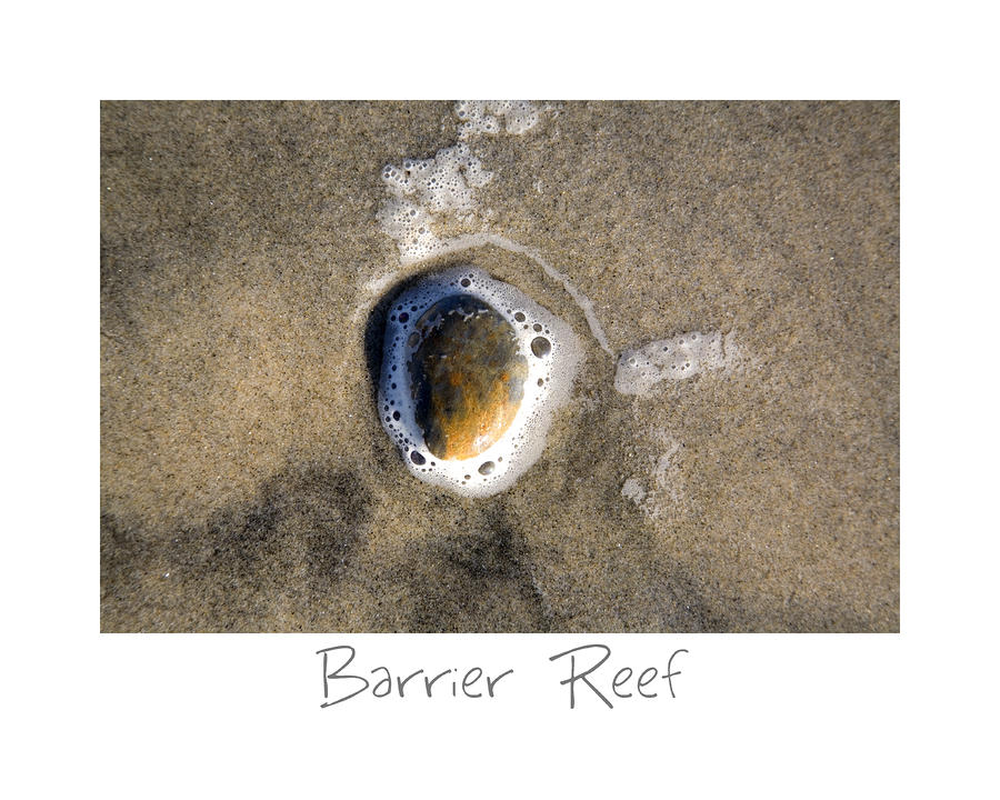 Barrier Reef Photograph  - Barrier Reef Fine Art Print