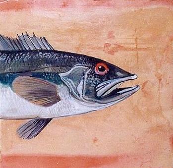 Fish Ceramic Art - Bass by Andrew Drozdowicz
