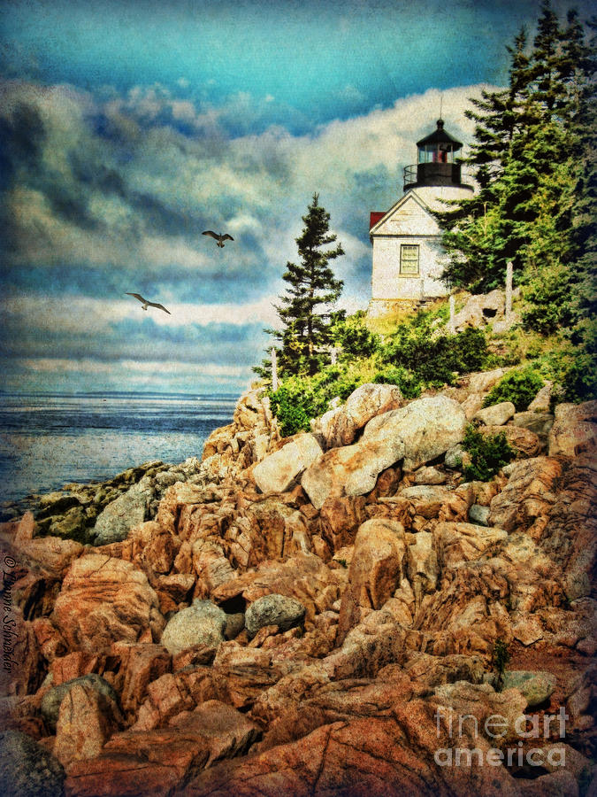 Bass Harbor - Acadia Np Digital Art  - Bass Harbor - Acadia Np Fine Art Print