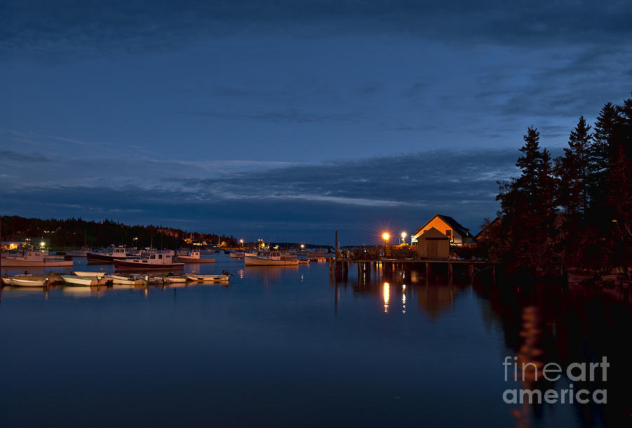Bass Harbor At Night Photograph