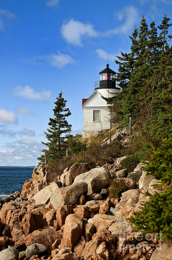Bass Harbor Light Photograph  - Bass Harbor Light Fine Art Print