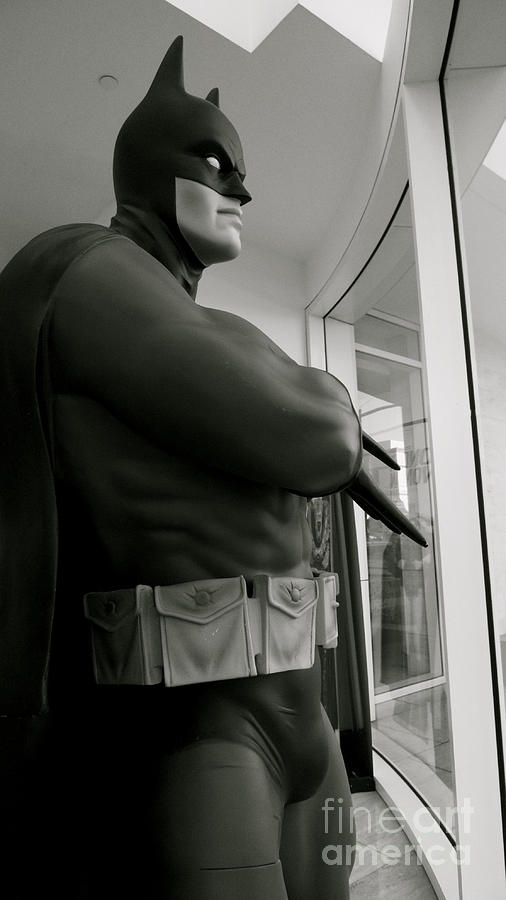 Batman Is Contemplating World Peace Photograph  - Batman Is Contemplating World Peace Fine Art Print