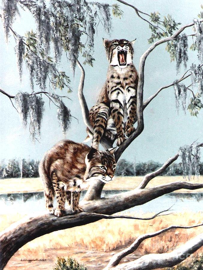 Bayou Bobcats Painting