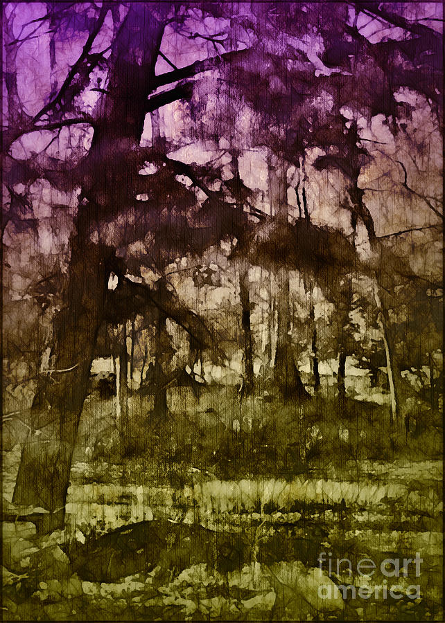 Bayou Twilight Photograph  - Bayou Twilight Fine Art Print
