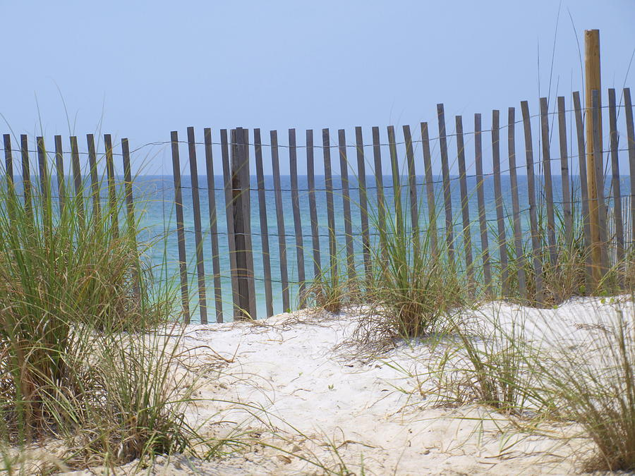 Beach Fence Photograph