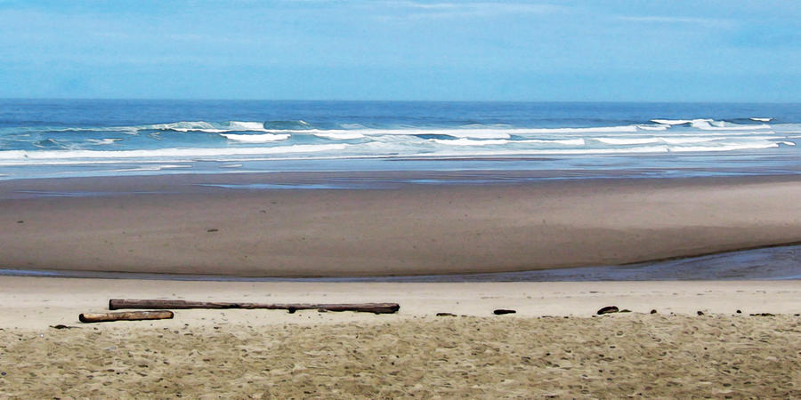 Beach On The Oregon Coast Photograph