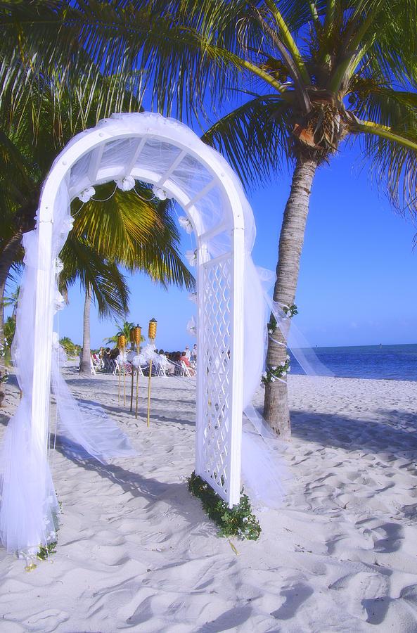 beach wedding reception decorations dream wedding. Black Bedroom Furniture Sets. Home Design Ideas