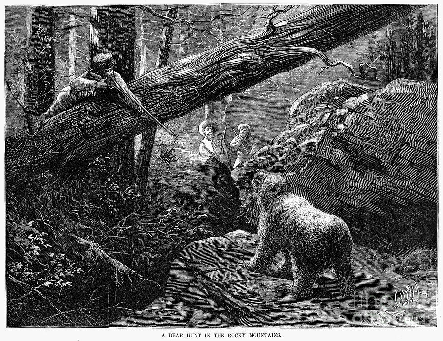Bear Hunt, 1876 Photograph  - Bear Hunt, 1876 Fine Art Print