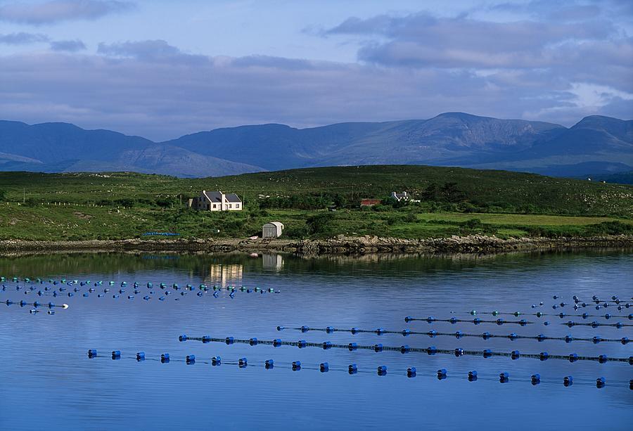 Beara, Co Cork, Ireland Mussel Farm Photograph